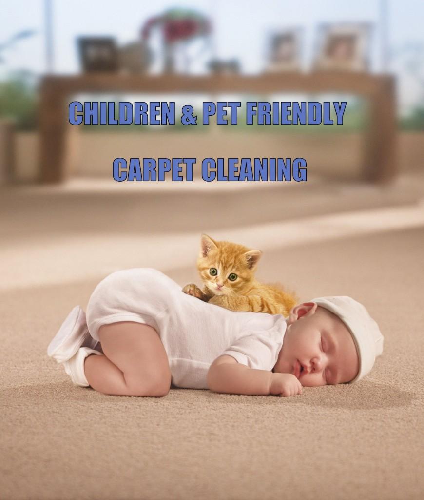 Pet Save Carpet Cleaning