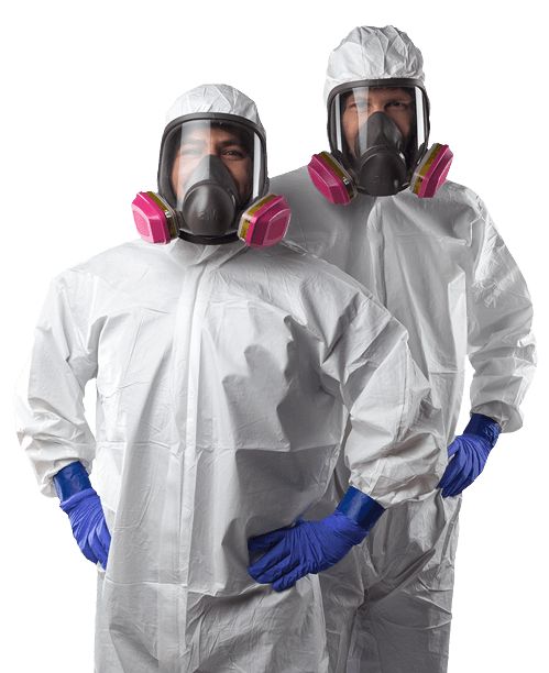 Mould Removal Services in Vancouver