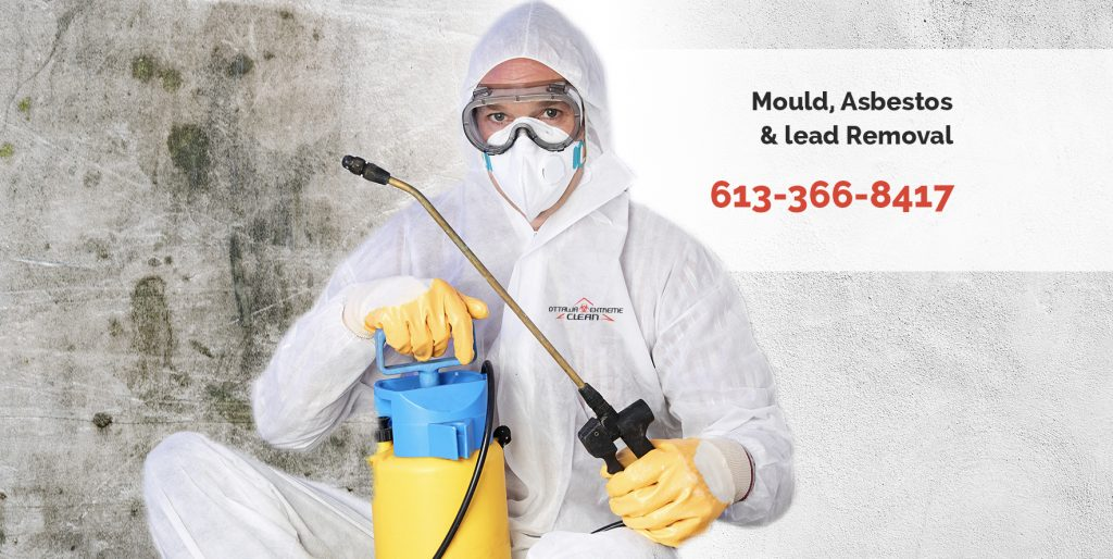 mold removal services, Vancouver
