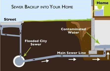 sewer backup Vancouver